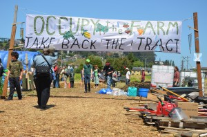 Occupy the Farm: Action Reflection & Next Steps Potluck @ Omni Commonsq | Oakland | California | United States