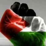 Palestine-fist_300x275
