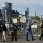 ILWU Local 4 Picket United Grain